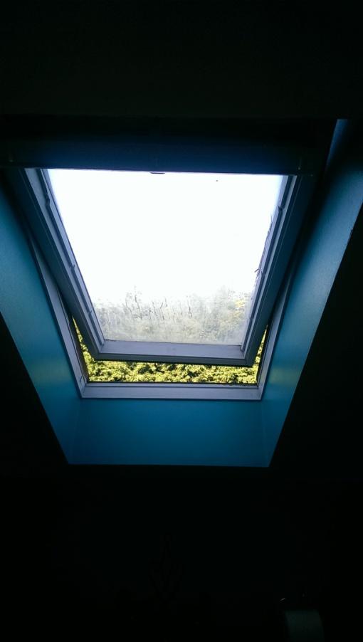 Roof Windows Belfast Roof Window Repairs Belfast Roof